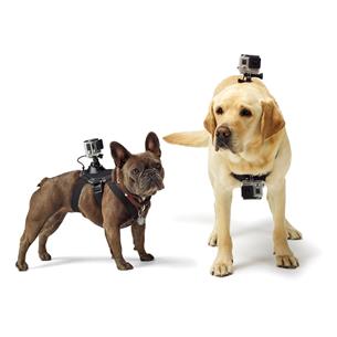 Ремни для собаки для экшн-камеры Fetch, GoPro