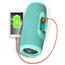Bezvadu portatīvais skaļrunis Charge 3, JBL