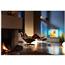 49 Ultra HD LED LCD televizors, Philips