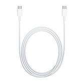 Cable USB-C Apple (2 m)