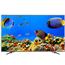 55 Ultra HD ULED LCD televizors, Hisense