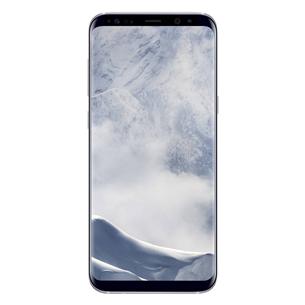 Viedtālrunis Galaxy S8+, Samsung / 64GB, Arktiskais Sudrabs