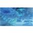 Spēle priekš Nintendo Switch, Xenoblade Chronicles 2