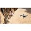 Radio vadāms lidaparāts Mavic Air Fly More Combo, DJI