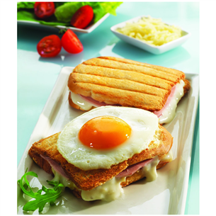 Toasted sandwich plates Snack Collection, Tefal