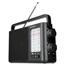 Radio ICF-506, Sony