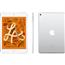 Planšetdators Apple iPad mini (2019) / 256 GB, WiFi
