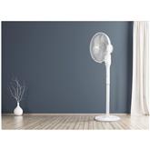 Ventilators FS41, ECG