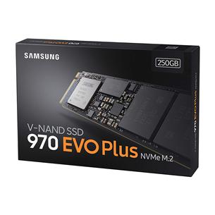 SSD cietais disks 970 EVO Plus, Samsung / 250GB, M.2 MZ-V7S250BW