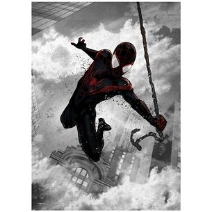 Plakāts Spider-Man - Marvel Dark Edition
