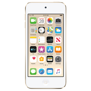 Apple iPod Touch 2019 / 32 GB