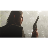Игра для PlayStation 4 Red Dead Redemption 2