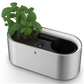 Augu audzēšanas ierīce Ambient Herbs@ home, WMF