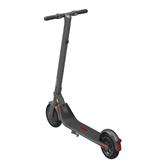 Electric scooter Ninebot E22E, Segway