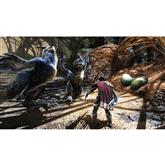 Игра Kingdoms of Amalur: Re-Reckoning для Xbox One