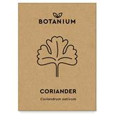 Koriandra sēklas, Botanium