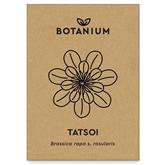 Tatsoi sēklas, Botanium