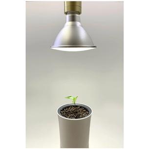 Лампа для растений Botanium (15 Вт)