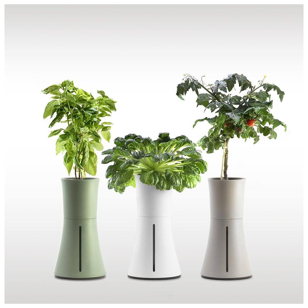 Smart Garden Botanium