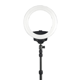 Riņķgaisma Halo 200 Ring Light, WISTREAM